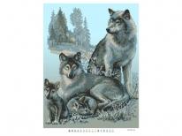 Схема вишивки бісером «Сімейство вовків»   (A2)