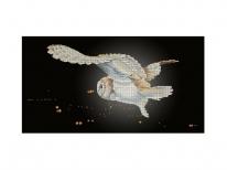 Схема вышивки бисером «Сова в ночном небе» (30x60)