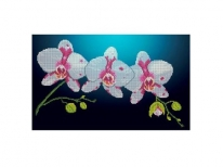 Схема вышивки бисером «Горизонтальная орхидея» (30x50)